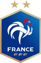 maglia Francia poco prezzo 2020 2021