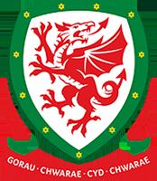 maglia Galles poco prezzo 2020 2021