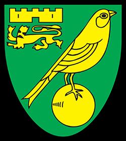 maglia Norwich City poco prezzo 2020 2021